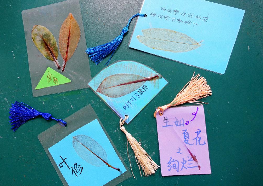 叶脉书签制作 学生创意无限